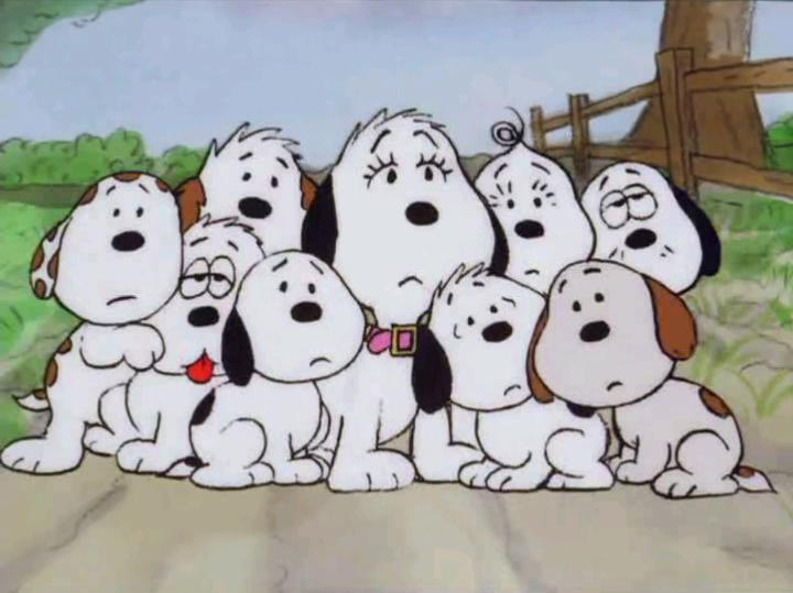 Toys For Family Reuion : Snoopy family el de